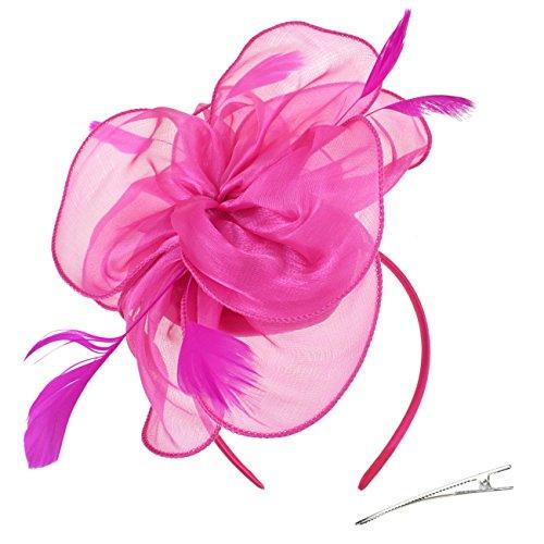 DRESHOW Fascinators Hut Cocktail Party Tee Kopfbedeckung Blume Mesh Organza Bänder Federn auf einem Stirnband und Gabel Clip für Mädchen und Damen