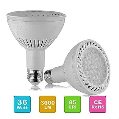 PAR30 LED Flood Light Bulb 36W LED Spot Light (350W Halogen Bulbs Equivalent) Spotlight Bulb E27/E26 Medium Base 6000K Cool White,2700-3200lm,25°Beam Angle, Non-dimmable, Pack of 2
