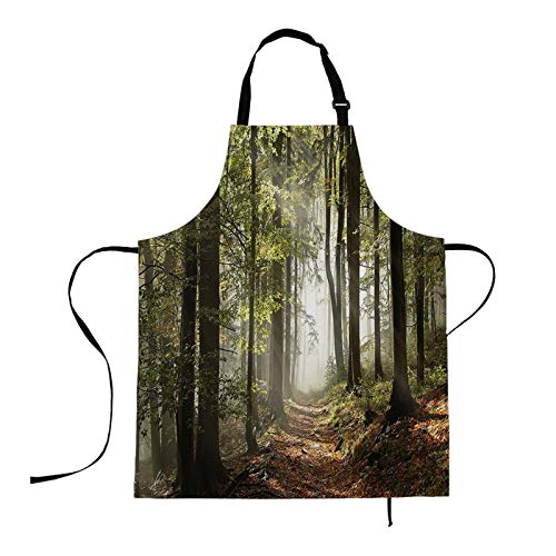 HOSNYE Aprons Forest Path Apron Landscape Sunlight Penetrates The Leaves Kitchen Bib with Adjustable Neck for Cooking Gardening,Adult Size