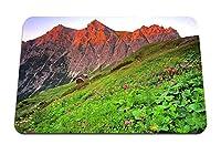 26cmx21cm マウスパッド (オーストリアbrandnertal草山斜面) パターンカスタムの マウスパッド
