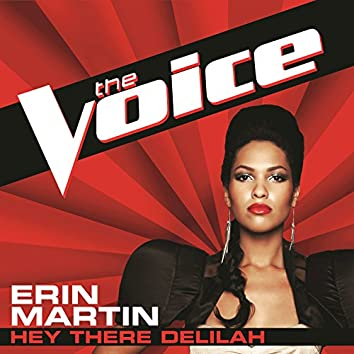 Hey There Delilah (The Voice Performance)