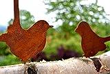 Unbekannt Vogel Astvogel Zaunkönig + Dompfaff sitzend Metall Edelrost Rost Rostfigur Deko Dekoration Deko-Idee Dekovogel Dekotier Rostdeko Gartendeko Geschenk-Idee Geschenk