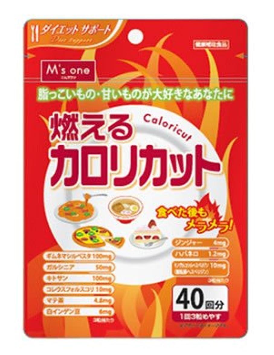 ゼリー支援モバイルエムズワン 燃えるカロリカット ダイエットサポート サプリメント 健康補助食品 (40回分)