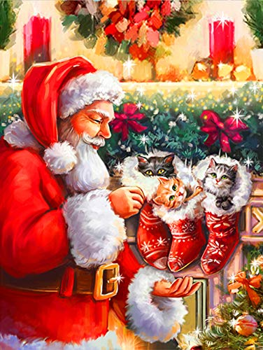 5D Diamond painting kit completo Babbo Natale, Christmas Pittura Diamante 5d Fai da Te, DIY Strass Ricamo a Punto Croce Craft Arts for Home Wall Decor 30 x 40 cm