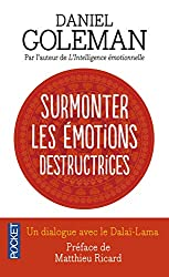 Surmonter les émotions destructrices de Daniel Goleman