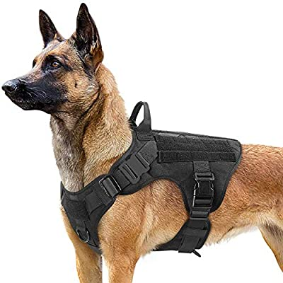 rabbitgoo Tactical Dog Harness for Large Dogs, Military Dog Harness with Handle, No-Pull Service Dog Vest with Molle & Loop Panels, Adjustable Dog Vest Harness for Training Hunting Walking, Black, L from GLOBEGOU CO.,LTD