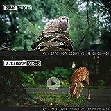 Zoom IMG-1 coolife fototrappola 20mp 2 7k