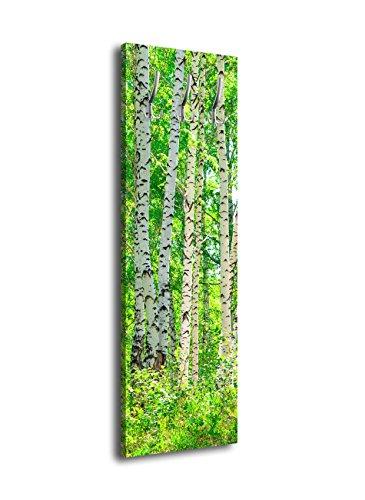 wandmotiv24 Garderobe mit Design Birkenhain G257 40x125cm Wandgarderobe Birke Wald Bäume