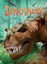 Best usborne beginners dinosaurs Reviews