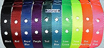 CollarSafe 1  Wide Nylon Replacement Collar w/Heavy Duty Buckle - FITS Most 2-Hole Receiver Modules 1-3/16  Apart