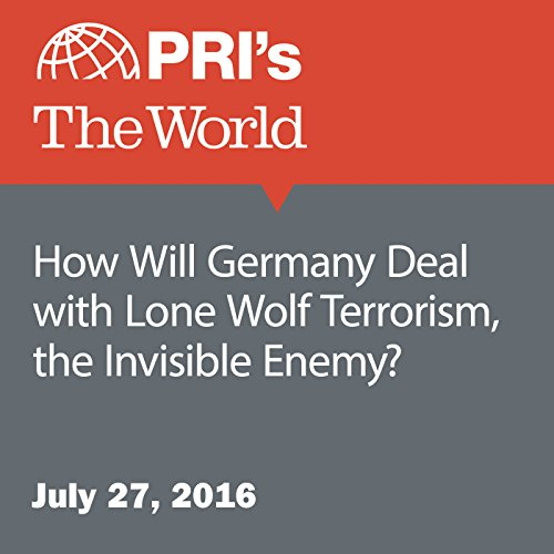 How Will Germany Deal with Lone Wolf Terrorism, the Invisible Enemy? audiobook cover art