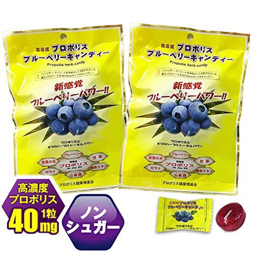 プロポリス のど飴 ブラジル産 プロポリスキャンディー プロポリス高濃度配合 2袋 (ブルーベリーキャンデイー2袋)