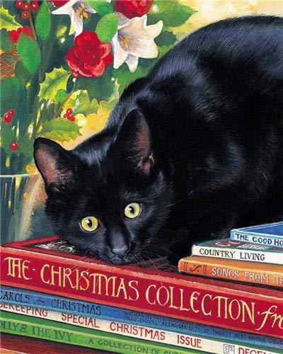 CYSGJ Cyfrowy obraz olejny dla dorosłych i dzieci zgodnie z cyfrowym malowaniem farba akrylowa - książka i zwierzę czarny kot prezenty urodzinowe i dekoracja domu 40 x 50 cm (bez ramy)