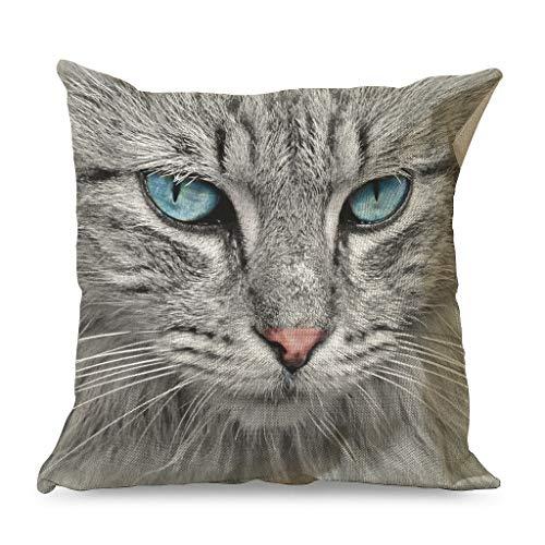 IOVEQG Funda de cojín decorativa de gato siberiano con cremallera para varios estilos para mascotas y gatos, 45 x 45 cm, color blanco
