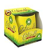 Velas de citronela pura antimosquitos para interiores y exteriores (1 vela, citronela)
