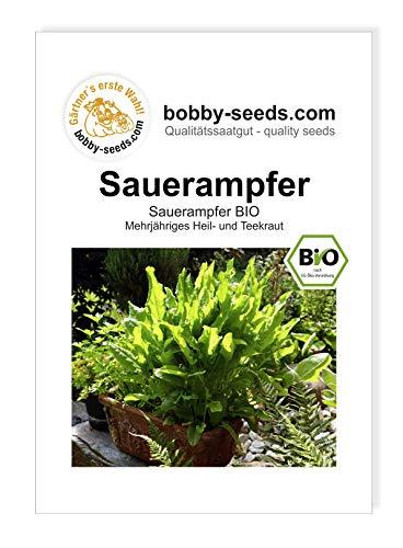 Bobby-Seeds BIO-Kräutersamen Sauerampfer Portion
