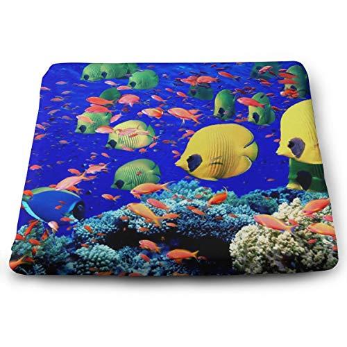 Memory Foam Pad zitkussen. Autostoel kussens om hoogte te verhogen - bureaustoel comfortabel kussen - onder de zee
