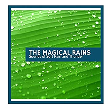 The Magical Rains - Sounds of Soft Rain and Thunder