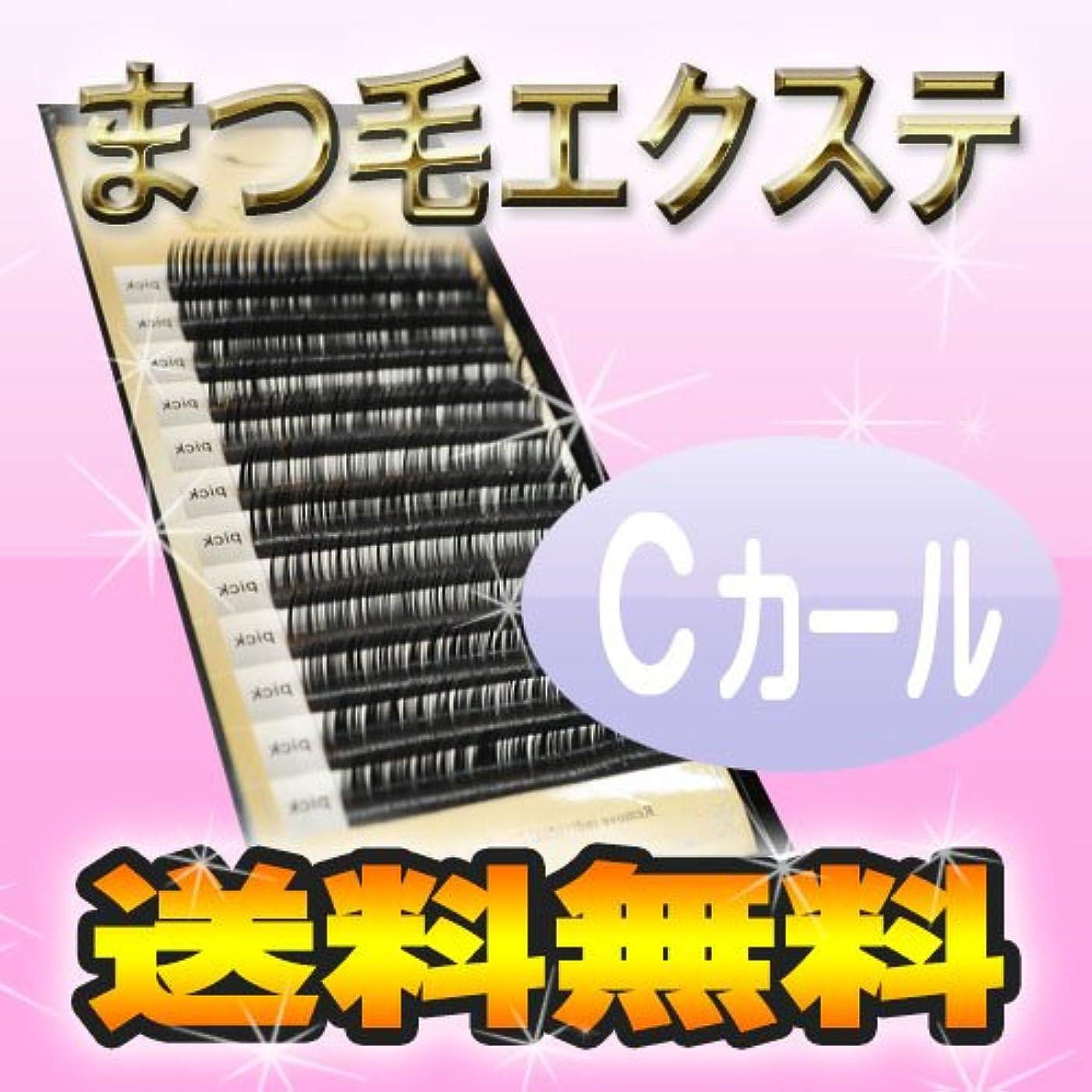 読書長さ実証する【まつげエクステ Cカール プレミアムミンク】12列 Cカール マツエク まつ毛エクステ まつエク セルフ 付けまつ毛 キット セット 業務用 アイラッシュ ミンク シルク まつ毛パーマ フラットマットラッシュ ではありません。 0.15mm,15mm