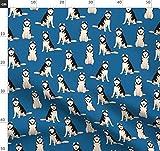 Hund, Hunde, Husky, sibirisch, Dunkelblau, realistisch,