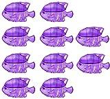 10 piezas accesorios de acuario filtro de tanque de peces herramientas de...