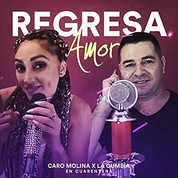 Regresa Amor (En Cuarentena)