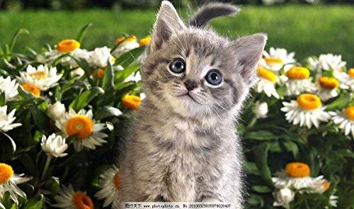Puzzels 1000 stukjes voor volwassenen Kinderen Kat in de kleine bloem Houten kindergeschenken Puzzel Decompressie Decoupeerzagen