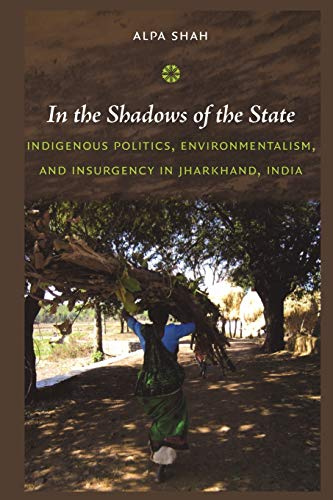 In the Shadows of the State: Indigenous Politics,...