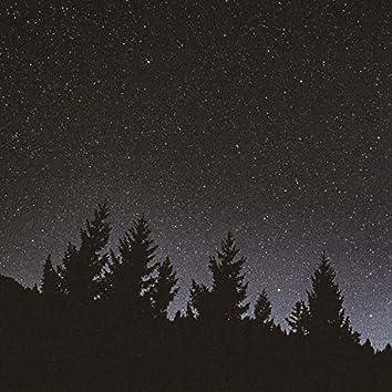 Noites Contam Histórias