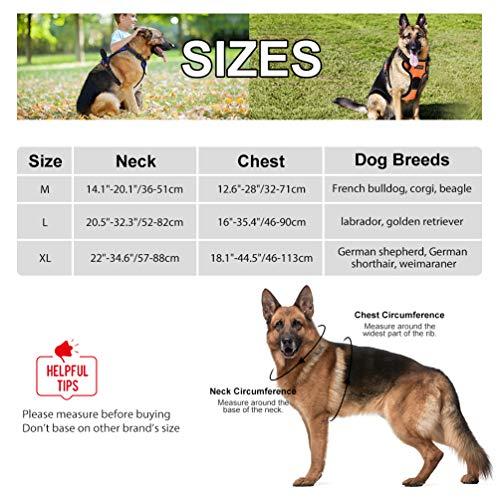 Petacc Dog Harness