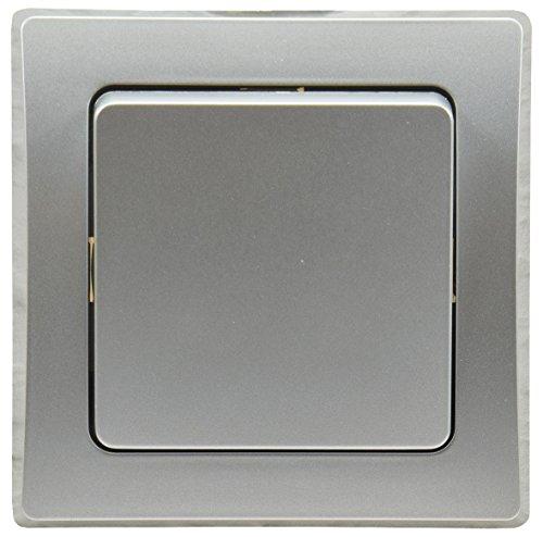 Delphi - Interruptor de luz Empotrado (250 V CA, Incluye Marco de conexión de Pinza), Color Plateado