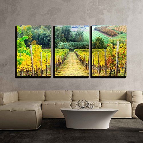 "wall26 - 3 Piece Canvas Wall Art - Beautiful Autumn Landscape with Vineyards. Tuscany, Italy - Modern Home Decor Stretched and Framed Ready to Hang - 24""x36""x3 Panels"