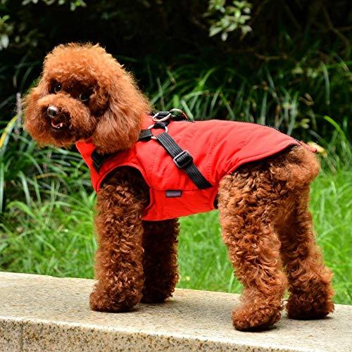 FZTWAN winterkleding voor honden, regenjas van vest met chihuahua-overhemd, warme kleding voor honden en kleine honden, S, picture