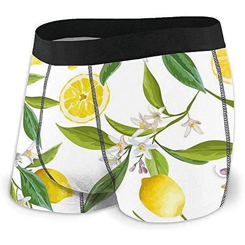 Web--ster Lemon Fruits Men 's, sous-vêtements à Angle Plat, Ceinture de Boxeur Respirante avec Ceinture apparente