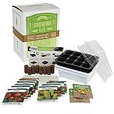 Salad & Vegetable Garden Seed Starter Kit   Deluxe   12 Non-GMO Varieties   Gardening Starter Kit   Seeds: Cucumber, Sweet Pepper, Tomato, Chives, Lettuce, Carrot & More