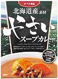 ベル食品 北海道産素材 やさいスープカレー 200g