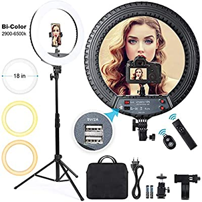 18 inch Ring Light with Stand and Phone Holder,...