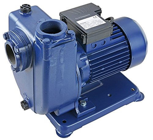 Pro-Lift-Montagetechnik 1500W selbstansaugende Wasserpumpe, 230V, 400L/min bei 10m, MTK2000J, 02025
