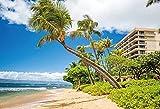 Verano Tropical Mar Playa Palmeras Árbol Aurora Vacaciones de Verano Fondo fotográfico escénico Natural Fondo fotográfico StudioA12.1x1.5m