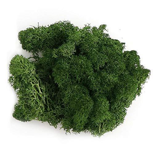 Artificial Moss,Fake Green Lichen,Fake Green Plants for Home Garden Patio Decoration, Artificial Reindeer Moss For Flower Plant Garden Lawn Crafts Wedding Decoration