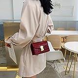 TOYIWEI Bolso bandolera de cuero PU con patrón de piedra para mujer 2020 Mini bolso de hombro con asa de metal Bolsos de viaje para mujer, pequeño rojo