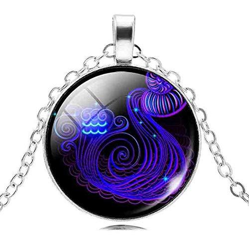 DDDDMMMY Halskette,Wassermann Fashion Silber 12 Sternbild Frauen Halskette Pullover Kette Charm Sternzeichen Anhänger Halsketten Drop