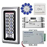 KDL Kit de Sistema de Control de Acceso RFID Controlador a Prueba de Agua Teclado con Cerradura eléctrica DC 12V, Salida de Puerta, para Puerta de Vidrio de Madera Sola