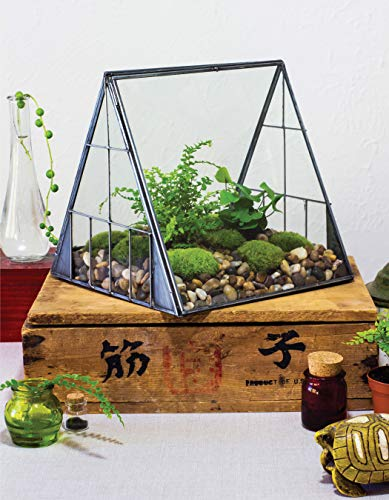 Creative Terrariums: 33 Modern Mini-Gardens for Your Home (Fox Chapel Publishing) Step-by-Step Cutting-Edge, Contemporary Designs to Add a Decorative Organic Presence to Even the Smallest Room