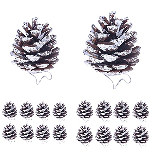 Jodsen Pigne di Natale, 18 Pezzi Mini pigne Natale Argento Neve da Appendere Pigne Decorazione Naturale Set di pigne per Albero di Natale Inverno Festa di Natale Artigianato Fai da Te