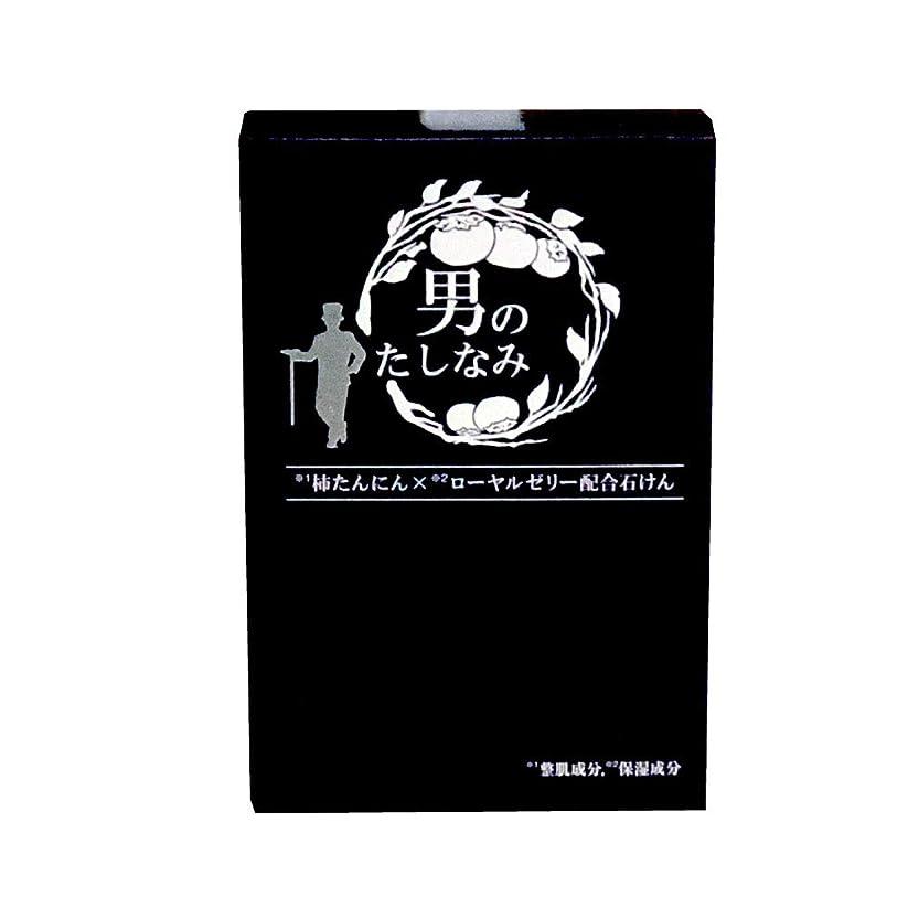 保持芸術費用【初回限定 お試し価格】 柿渋石鹸 男のたしなみ (100g)