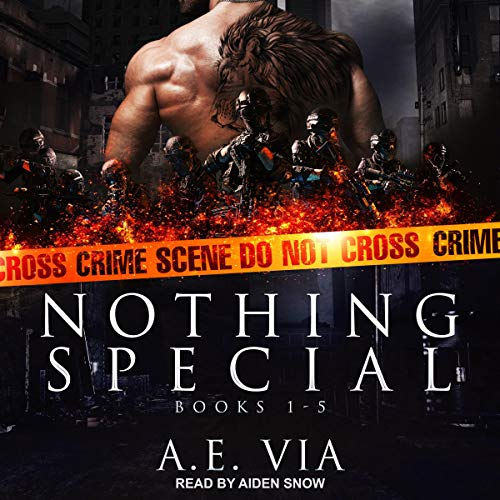 Nothing Special Series Box Set, Books 1-5 Audiobook By A.E. Via cover art