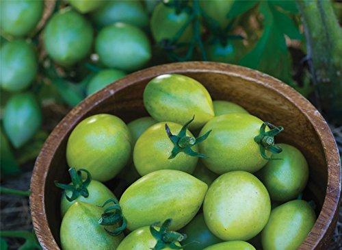 Il vous suffit de graines de l?gumes???Tomate???Vert Envy???50?graines???Gros Lot