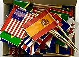 PuTwo Toothpicks Confezione da 100 bandiere mondiali da cocktail per eventi internazionali e etnici, scelte di cibo per partiti, Coppa del Mondo e Giochi Olimpici