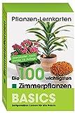 Pflanzen-Lernkarten: Die 100 wichtigsten Zimmerpflanzen: 100 Lernkarten mit Lernkartenbox - Karl-Michael Haake